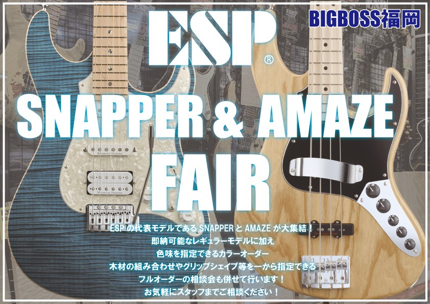 SNAPPER & AMAZE Fair