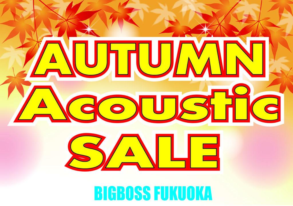 Autumn Acoustic Sale!!
