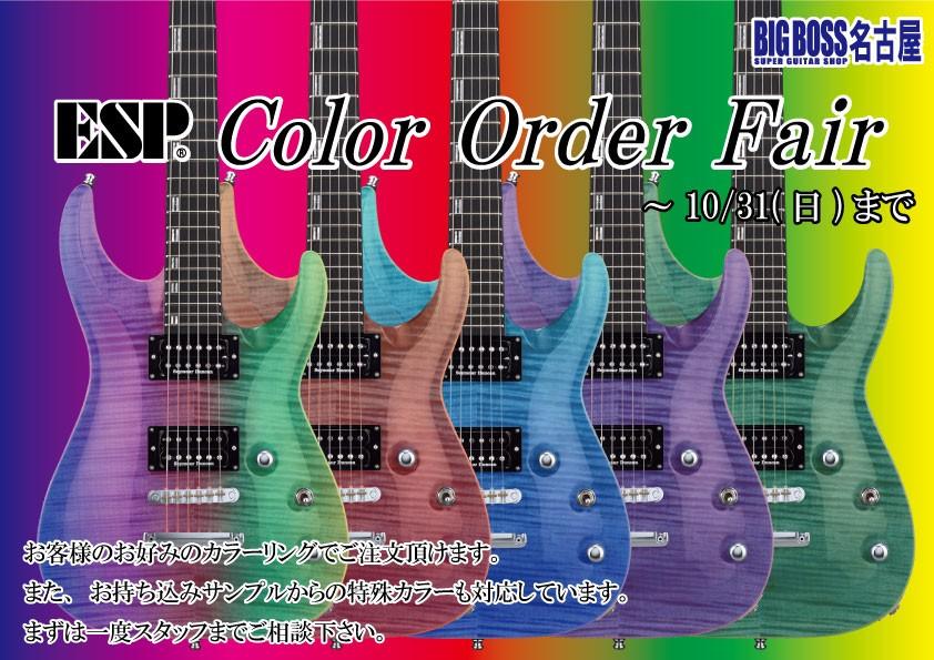 カラーオーダーフェア!