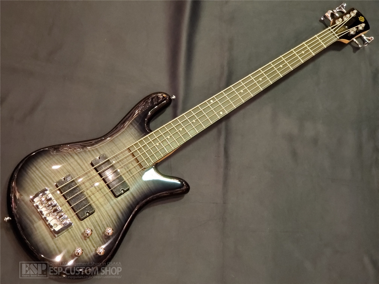 【即納可能】Spector(スペクター) Legend5 Standard / Black Stain Gloss 大阪店