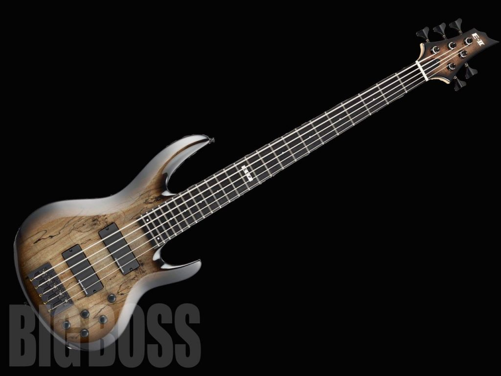 BTL-5 / Black Natural Burst