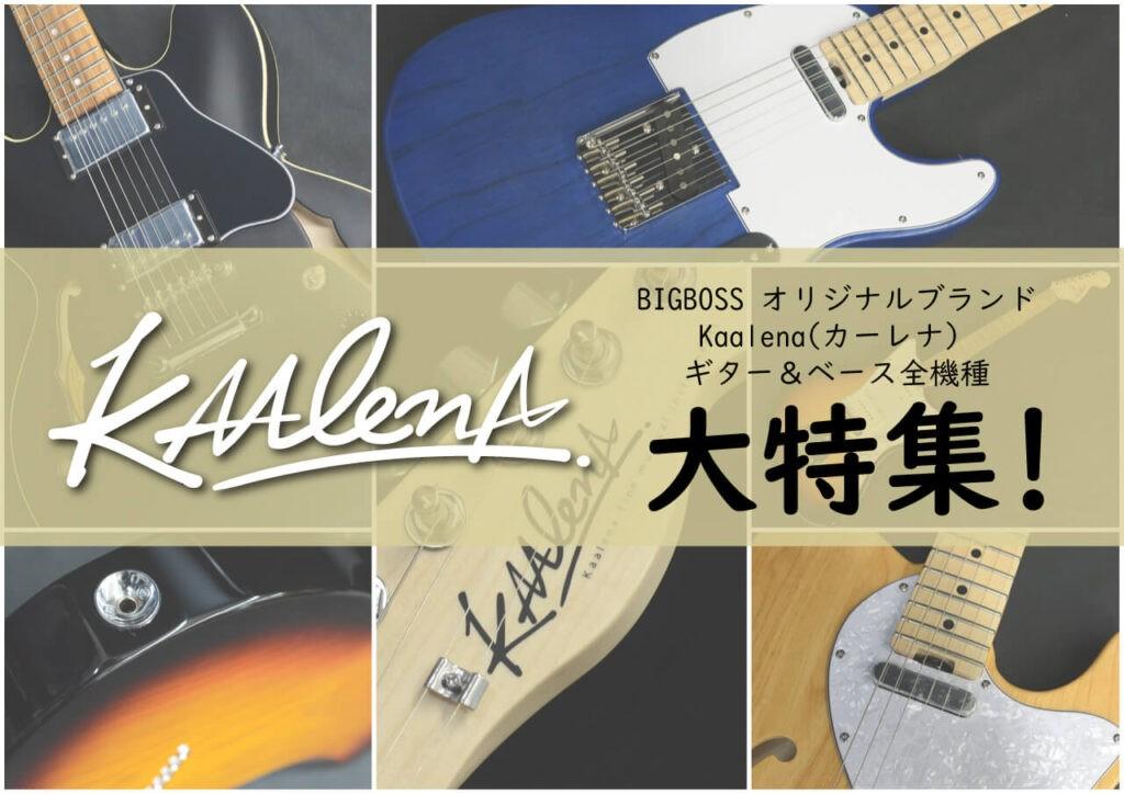 さあ、楽器を始めよう!! KAALENA大特集!!