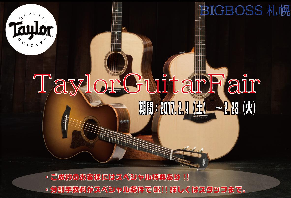 Taylor Guitar Fair